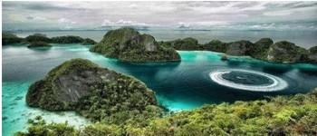 Indonesios